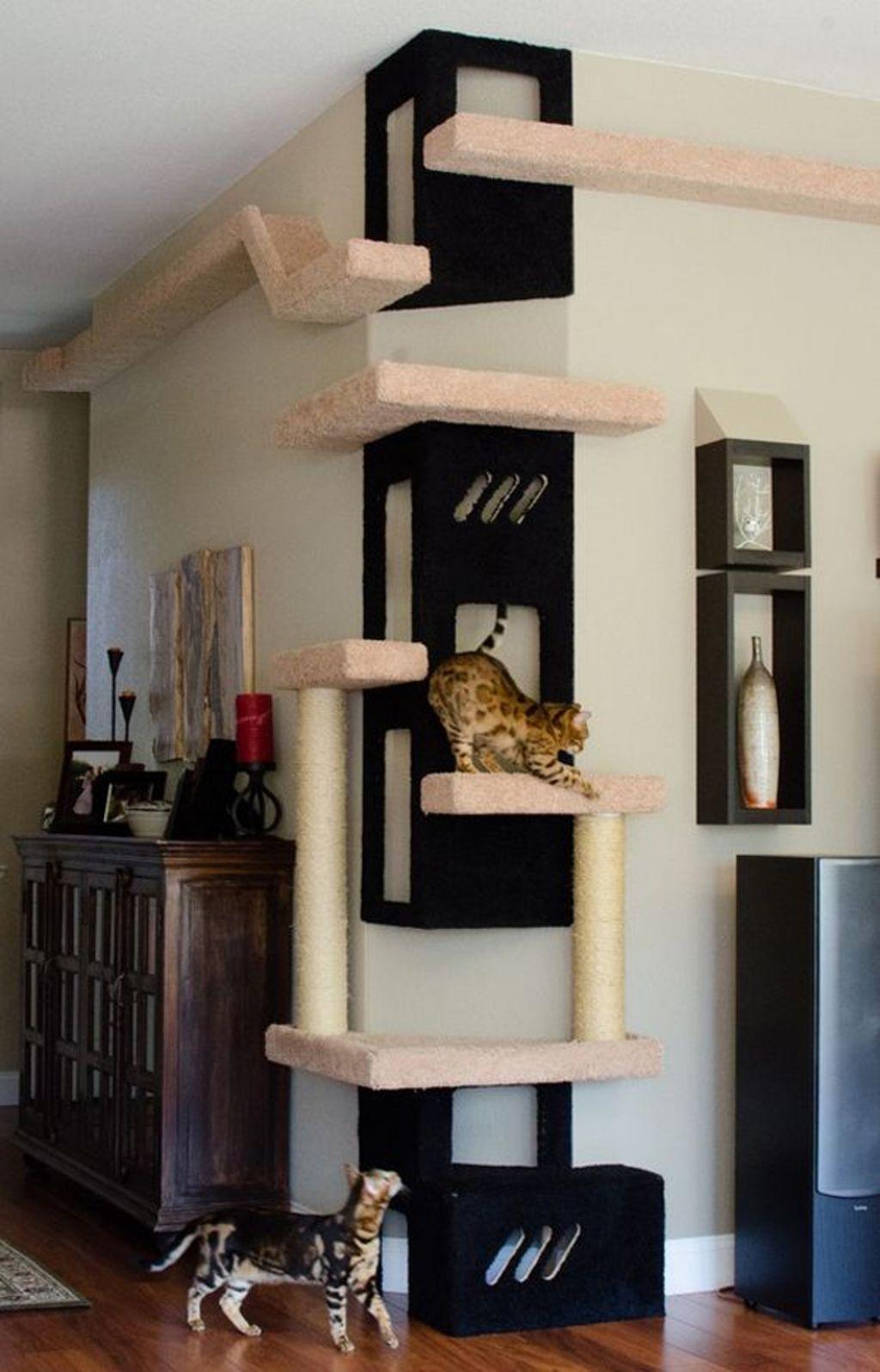 Квартирные идеи для кошек фото 33