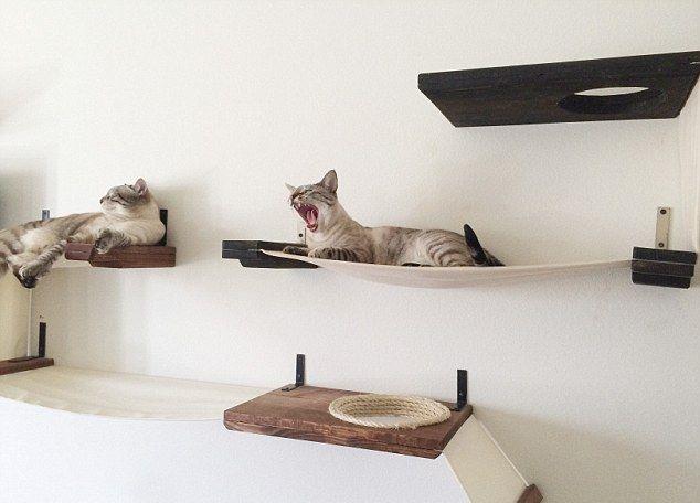 Квартирные идеи для кошек фото 29