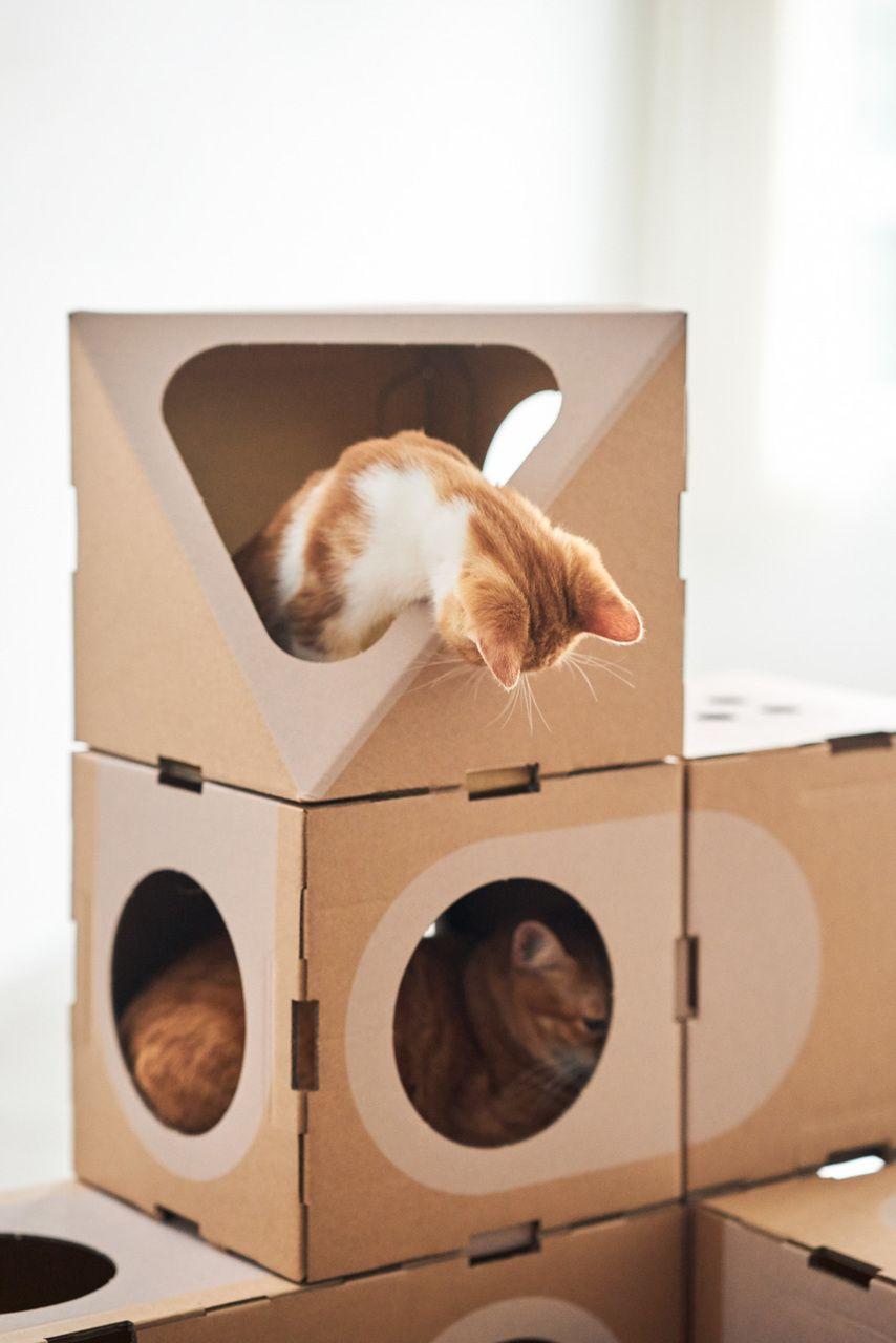 Квартирные идеи для кошек фото 27