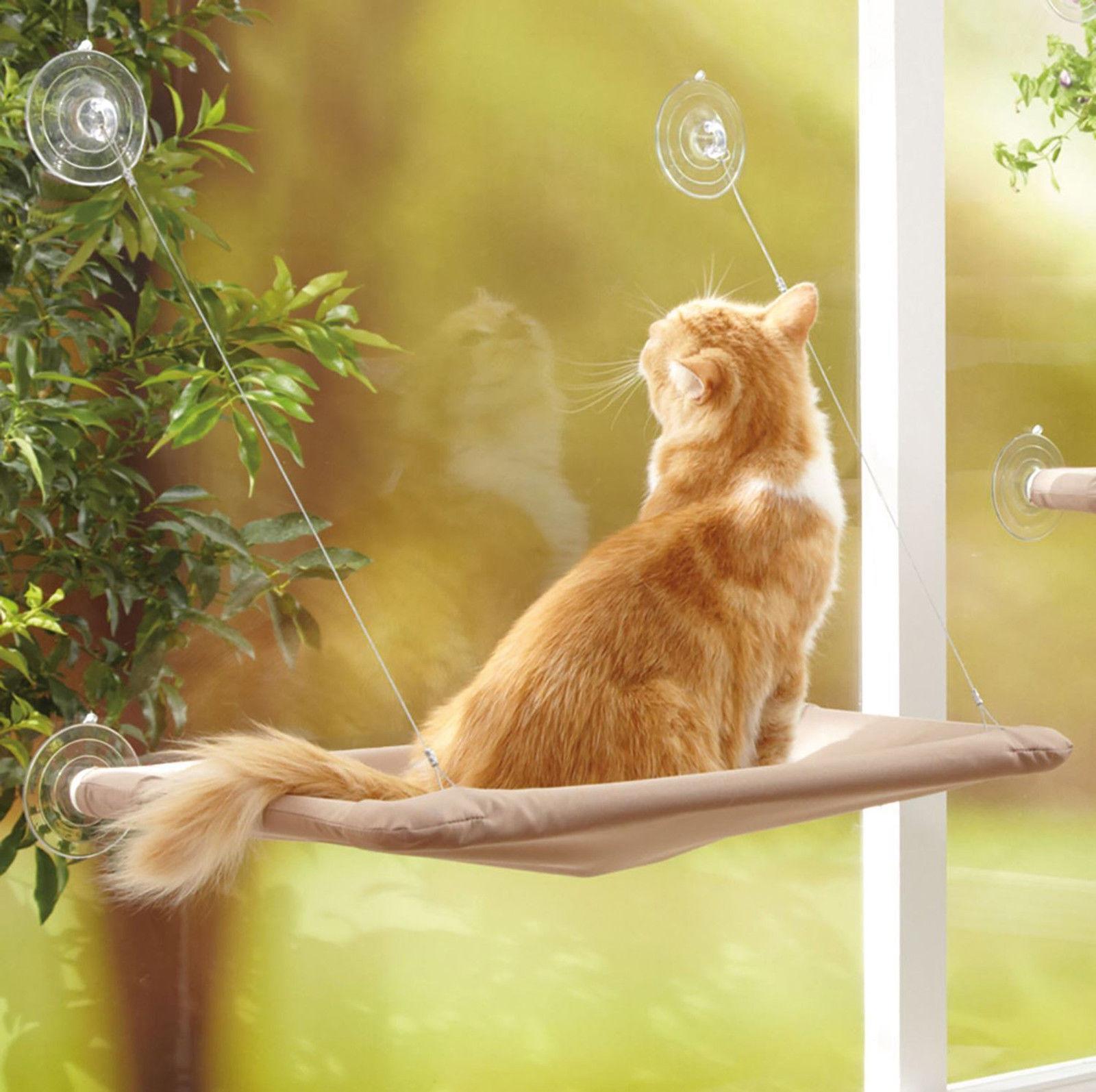 Квартирные идеи для кошек фото 19
