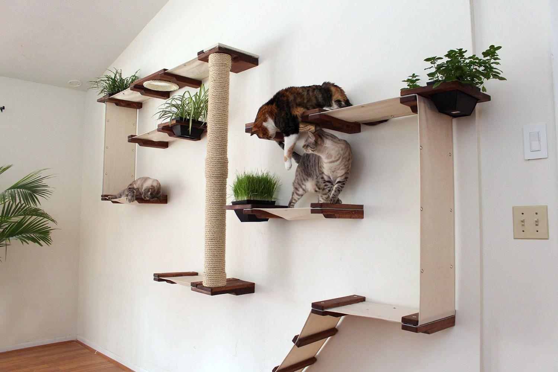 Квартирные идеи для кошек фото 18