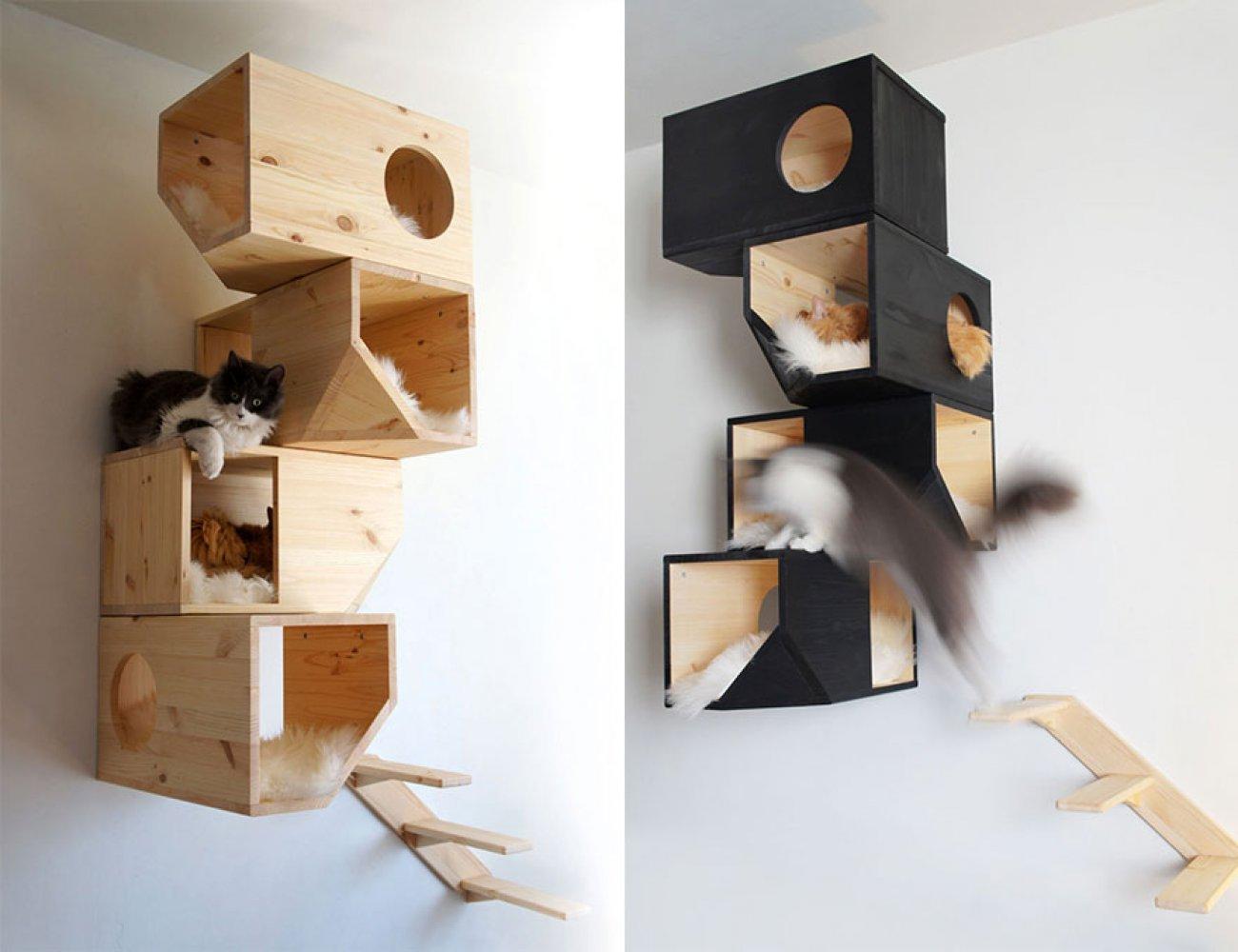 Квартирные идеи для кошек фото 3