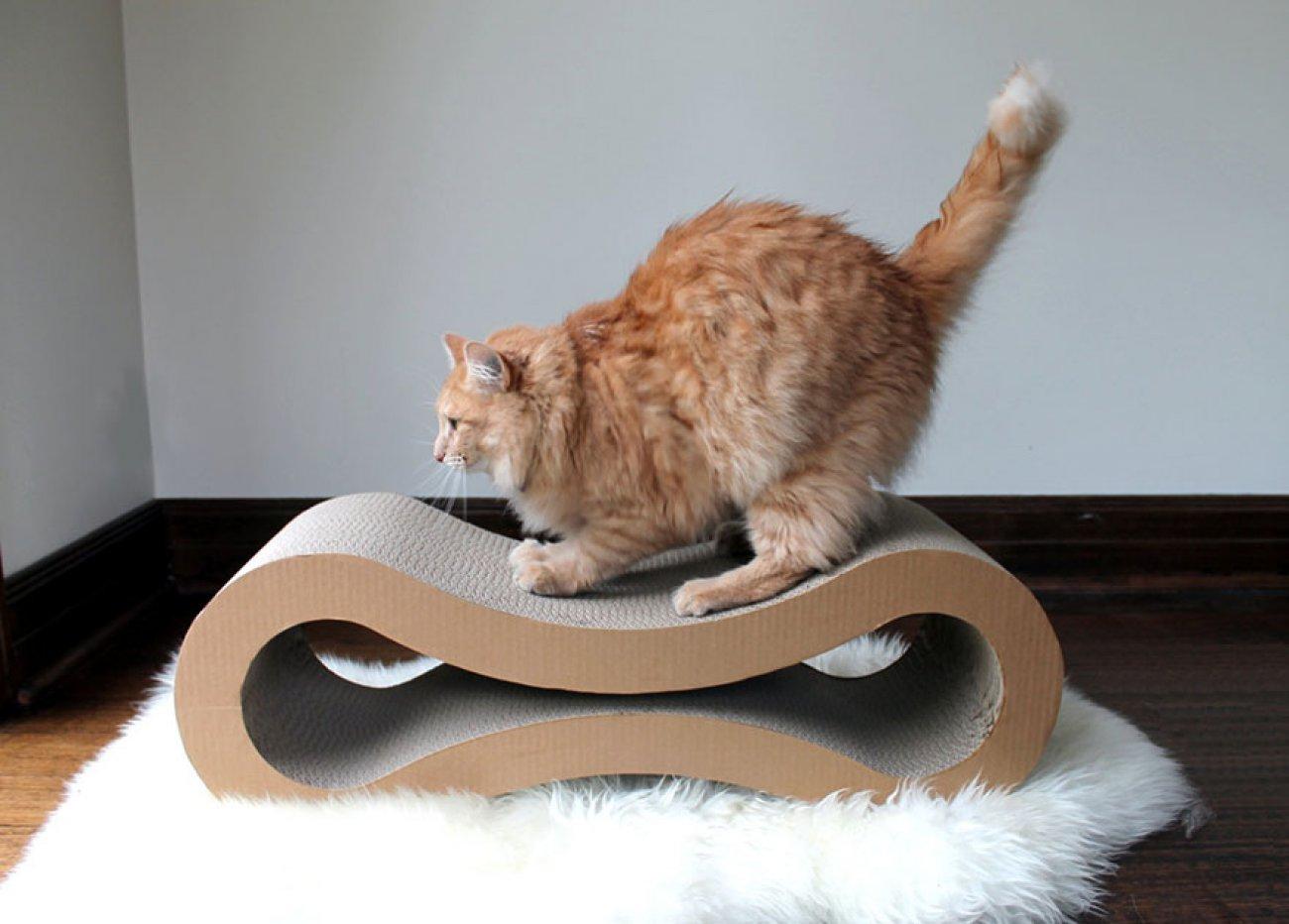 Квартирные идеи для кошек фото 2