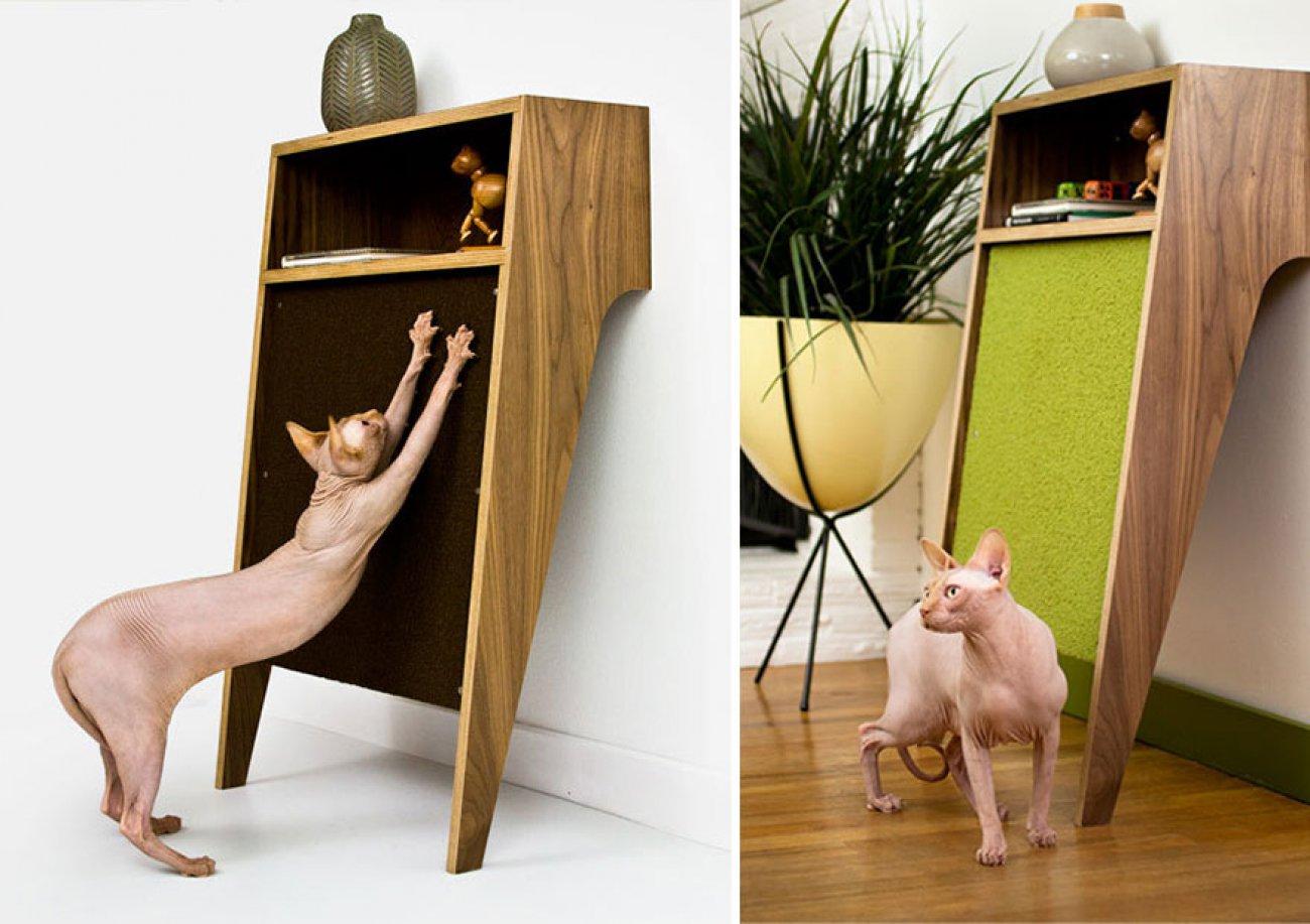 Квартирные идеи для кошек фото 1