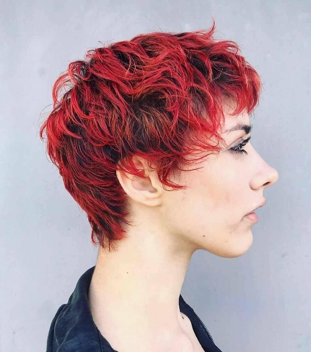 Красное пикси (red pixie) фото 3