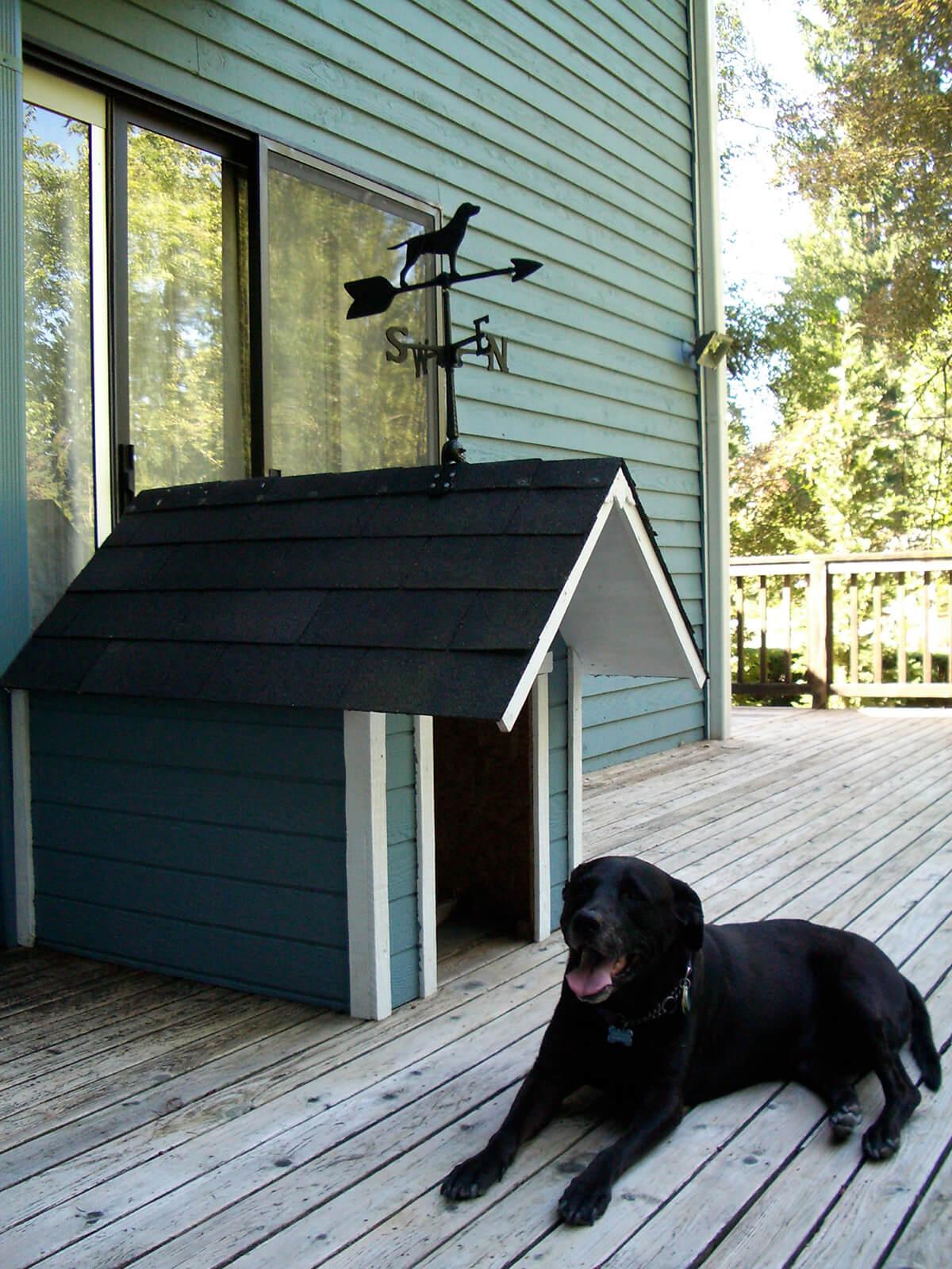 Дом для собак фото 3