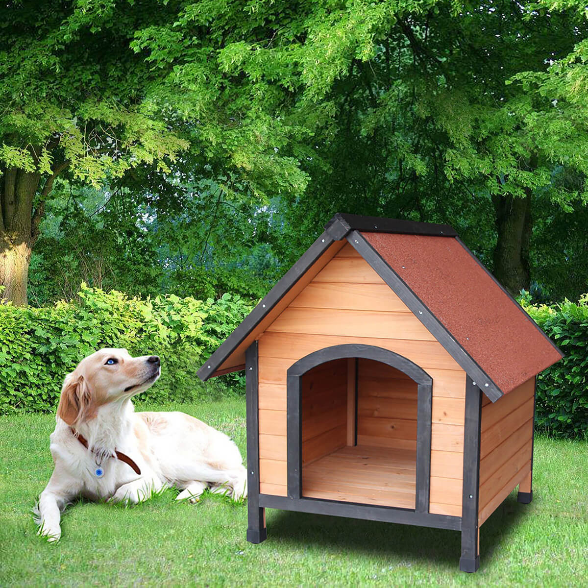 Дом для собак фото 7