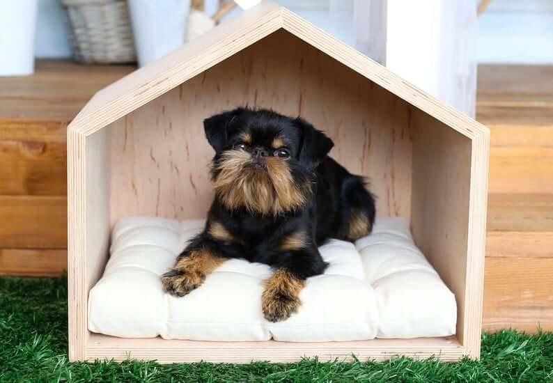 Дом для собак фото 11