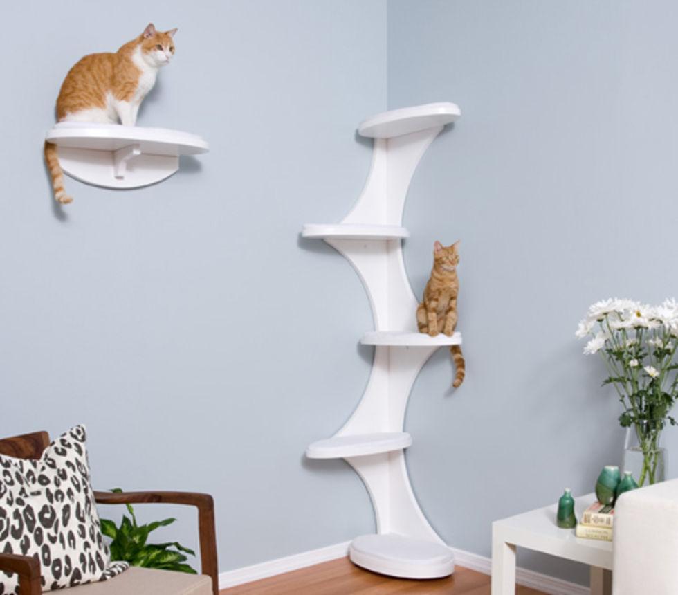 Квартирные идеи для кошек фото 28