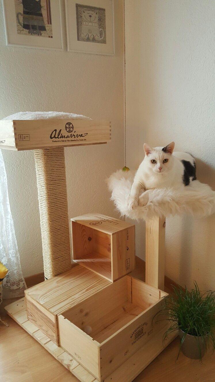 Квартирные идеи для кошек фото 25