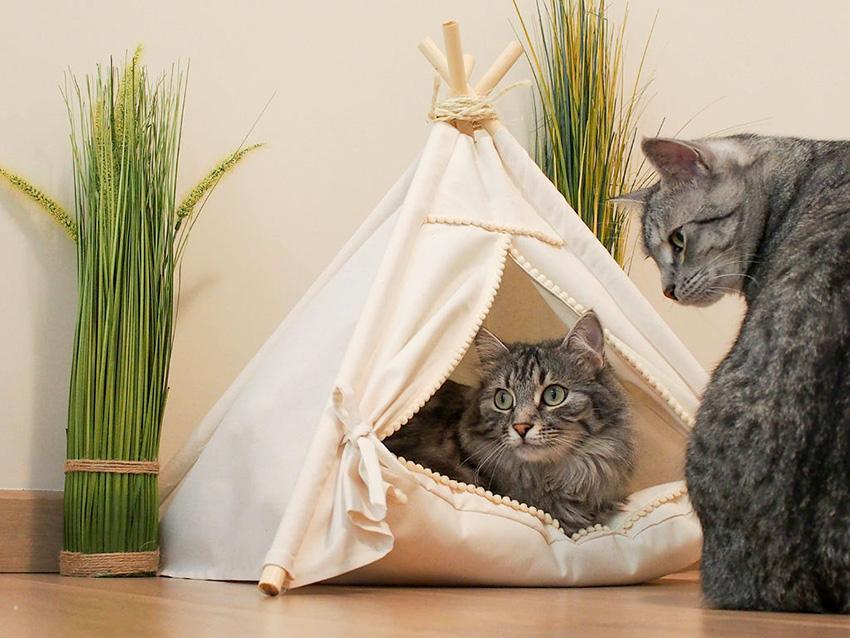 Квартирные идеи для кошек фото 15