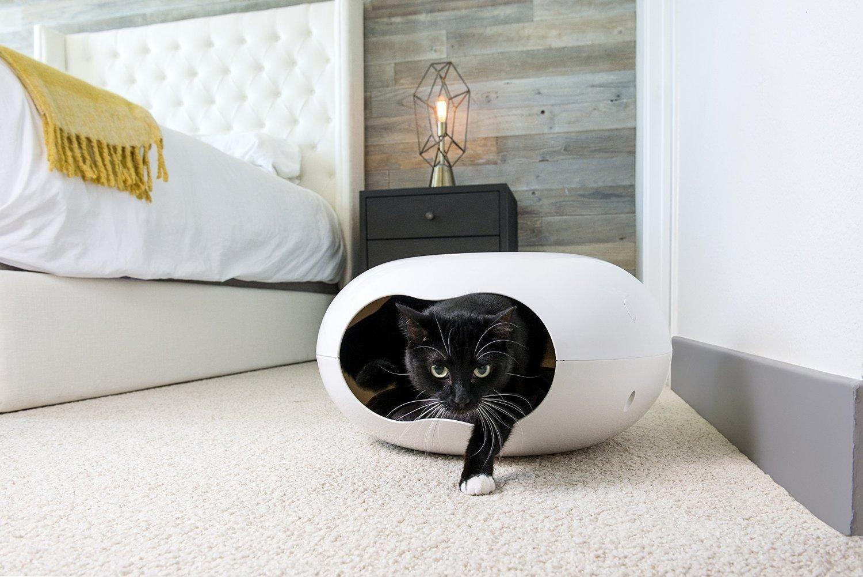 Квартирные идеи для кошек фото 16