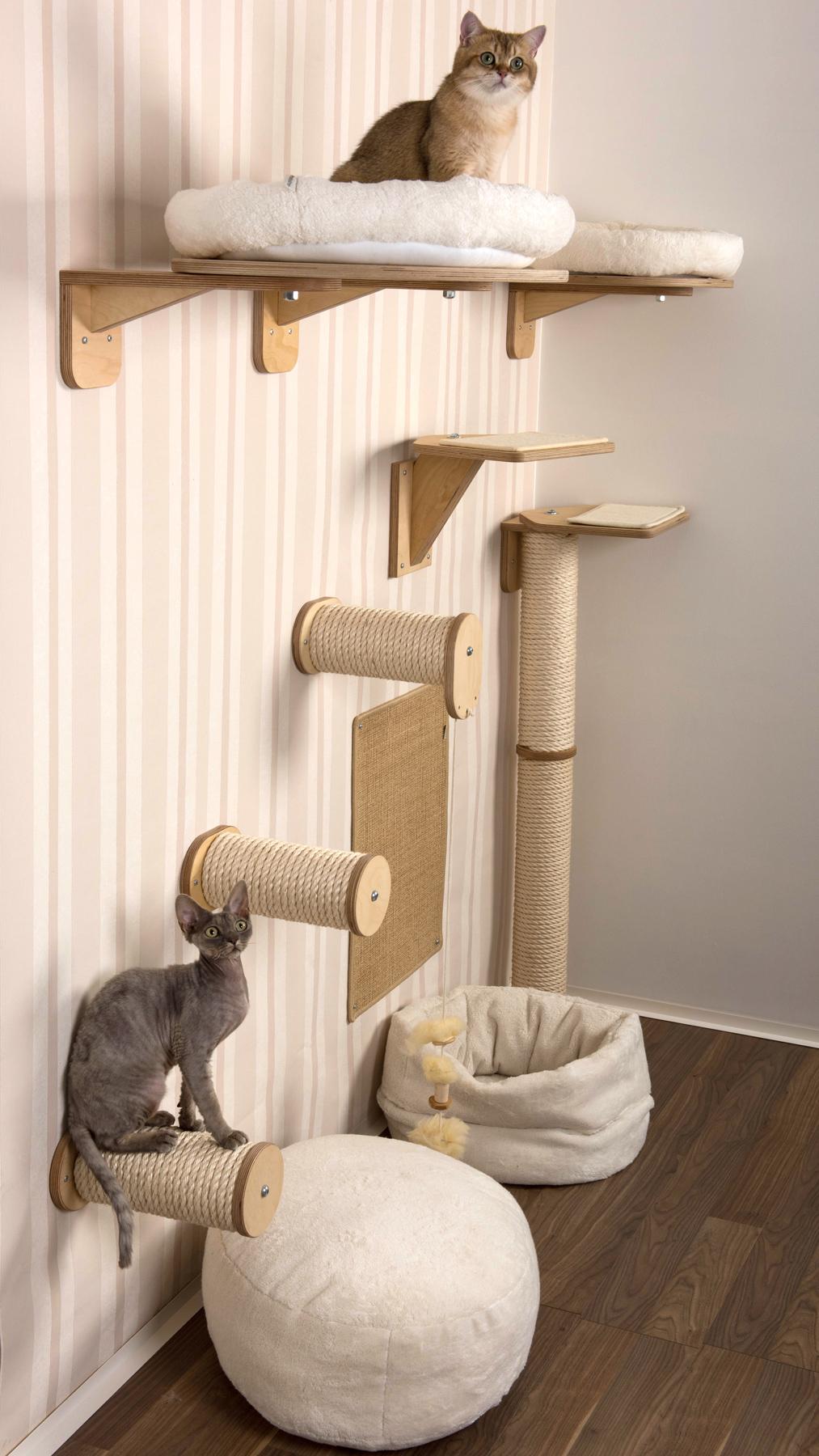 Квартирные идеи для кошек фото 10