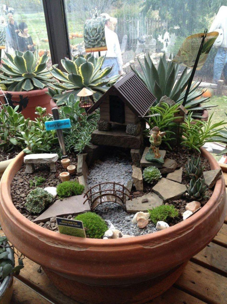 модный мини-сад у себя на подоконнике фото 17