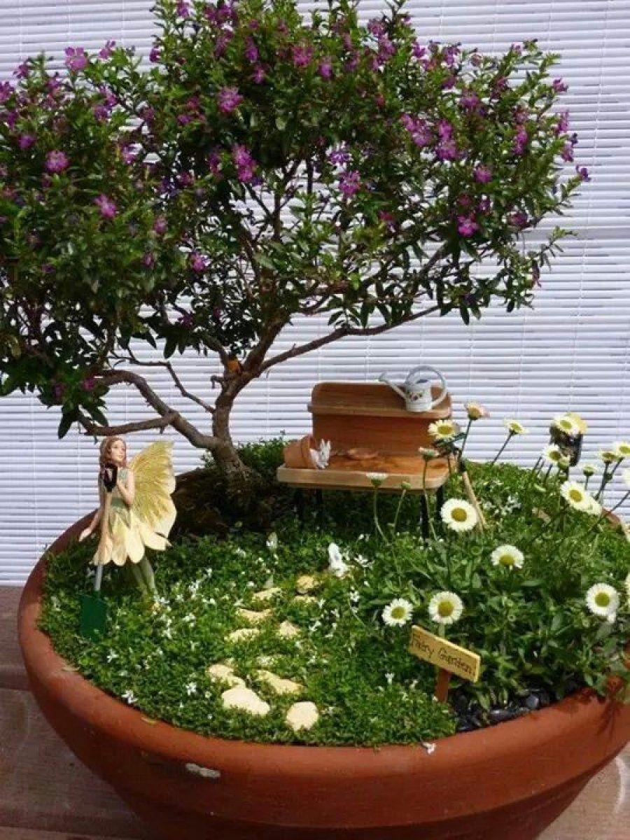 модный мини-сад у себя на подоконнике фото 18
