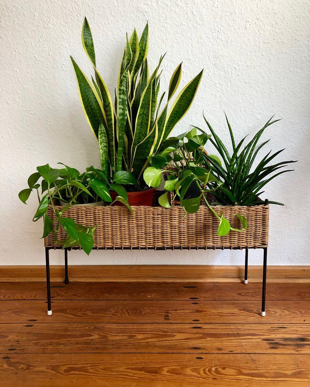 подставки для растений фото 4
